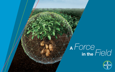Bayer's 75-Day Integrated Pest Management Program creates an agronomic force field around potatoes