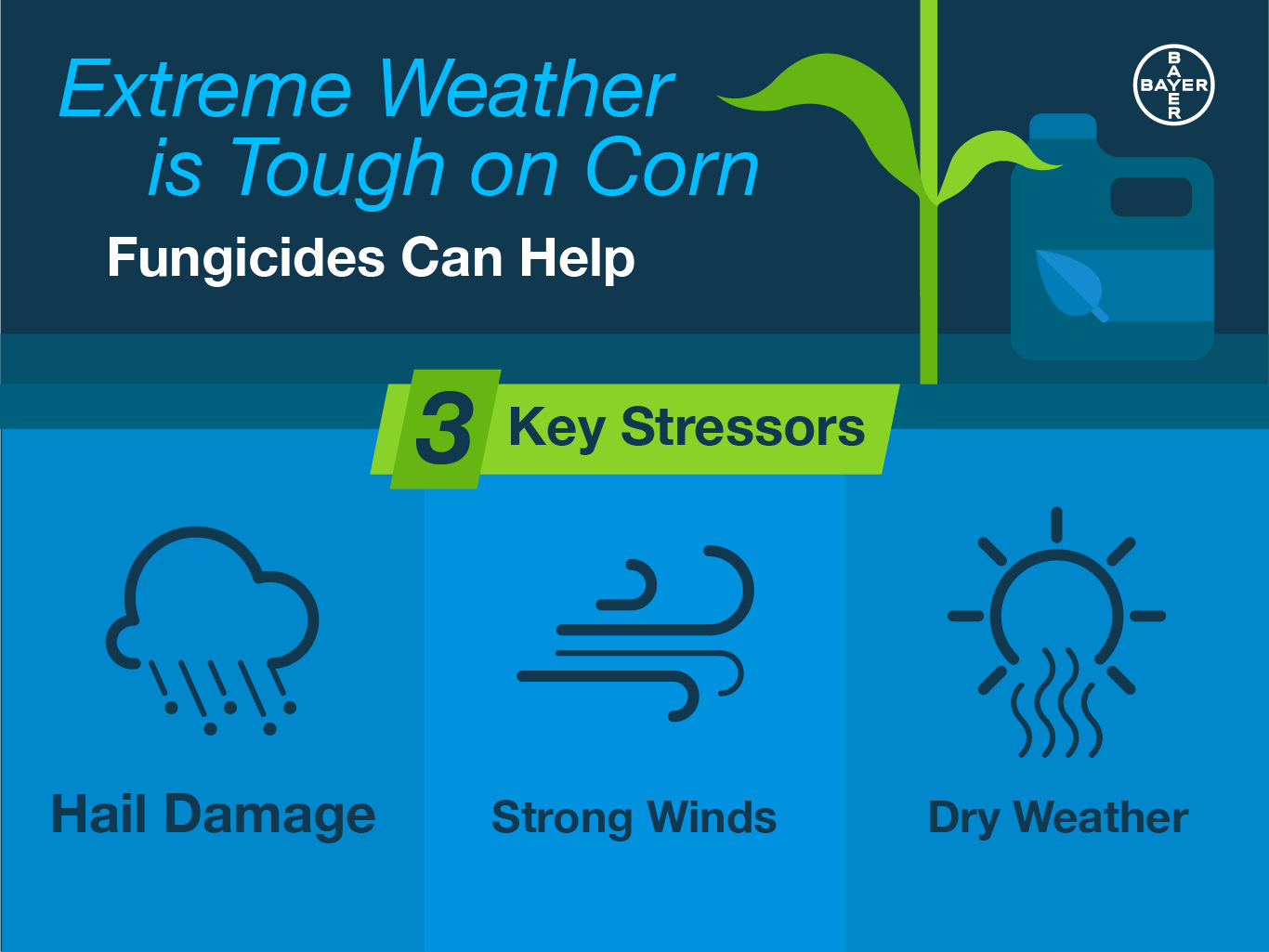3-key-weather-stressors-on-corn