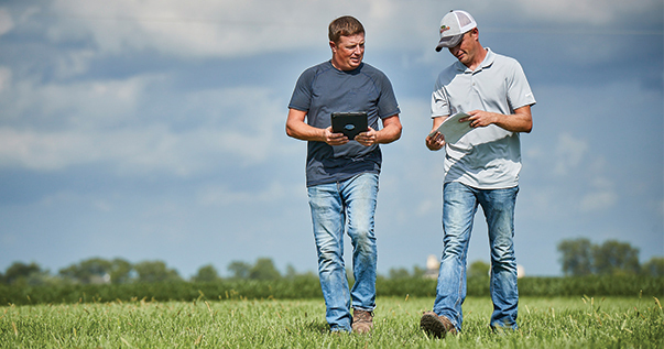 Farmers in the Field Looking at Crop Protection Data