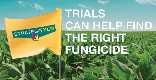 Trials can help find the right fungicide