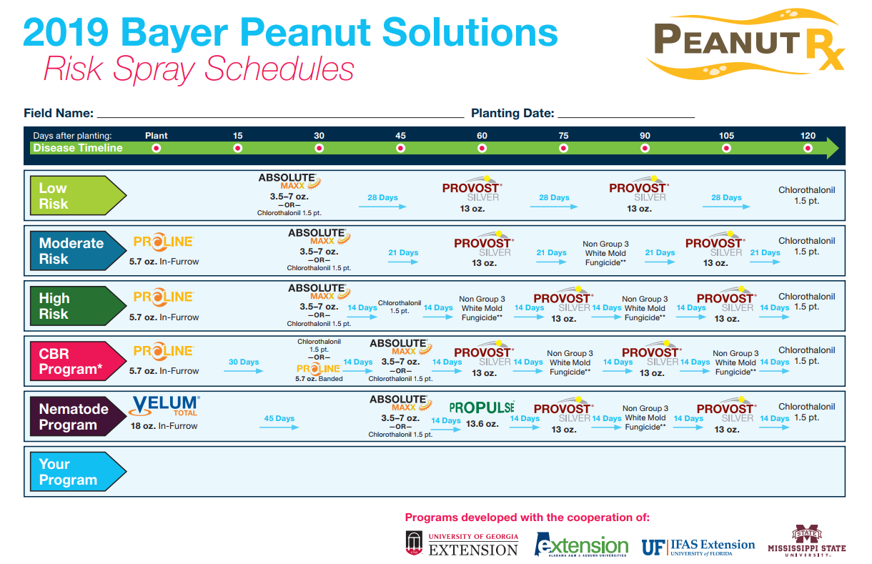 2019 Bayer Peanut Solutions