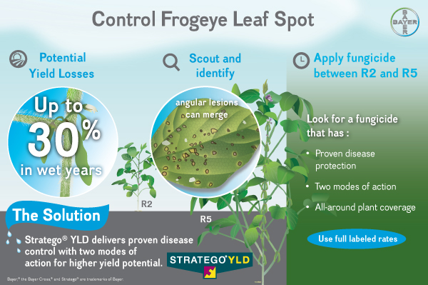 control frogeye leaf spot with Stratego YLD