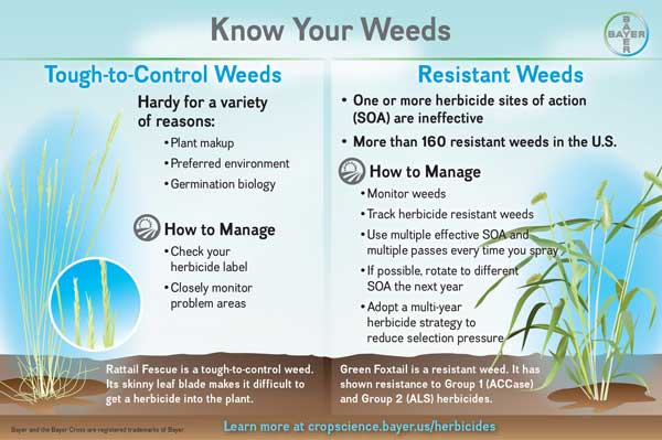 Tough vs Resistant Weeds
