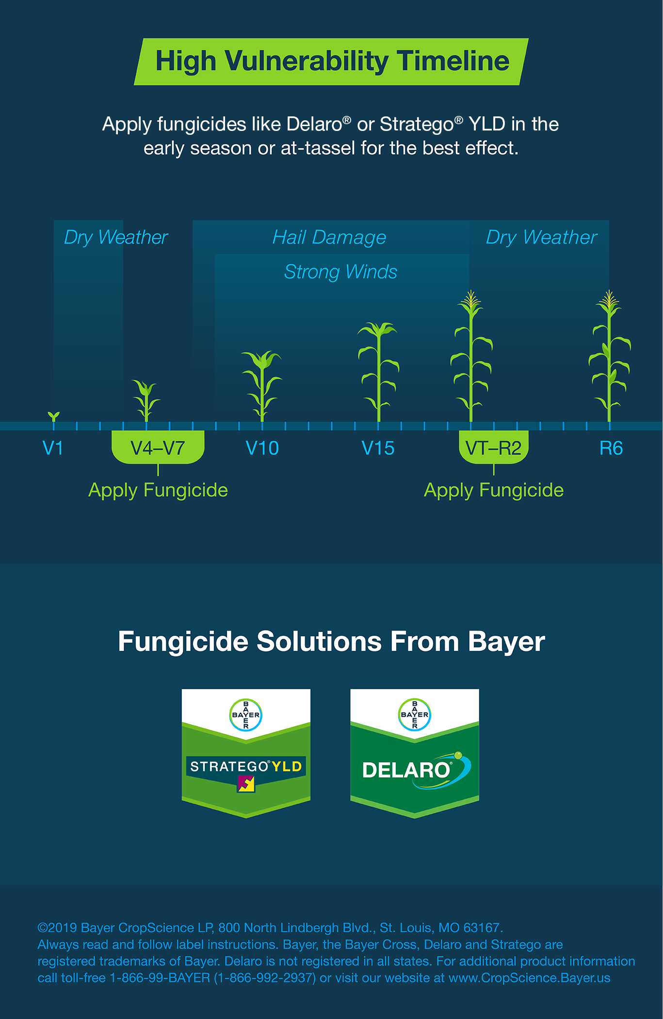 apply-fungicides-like-delaro-or-strategoyld-in-the-early-season-or-at-tassel