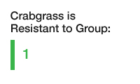 crabgrass is resistant to group one