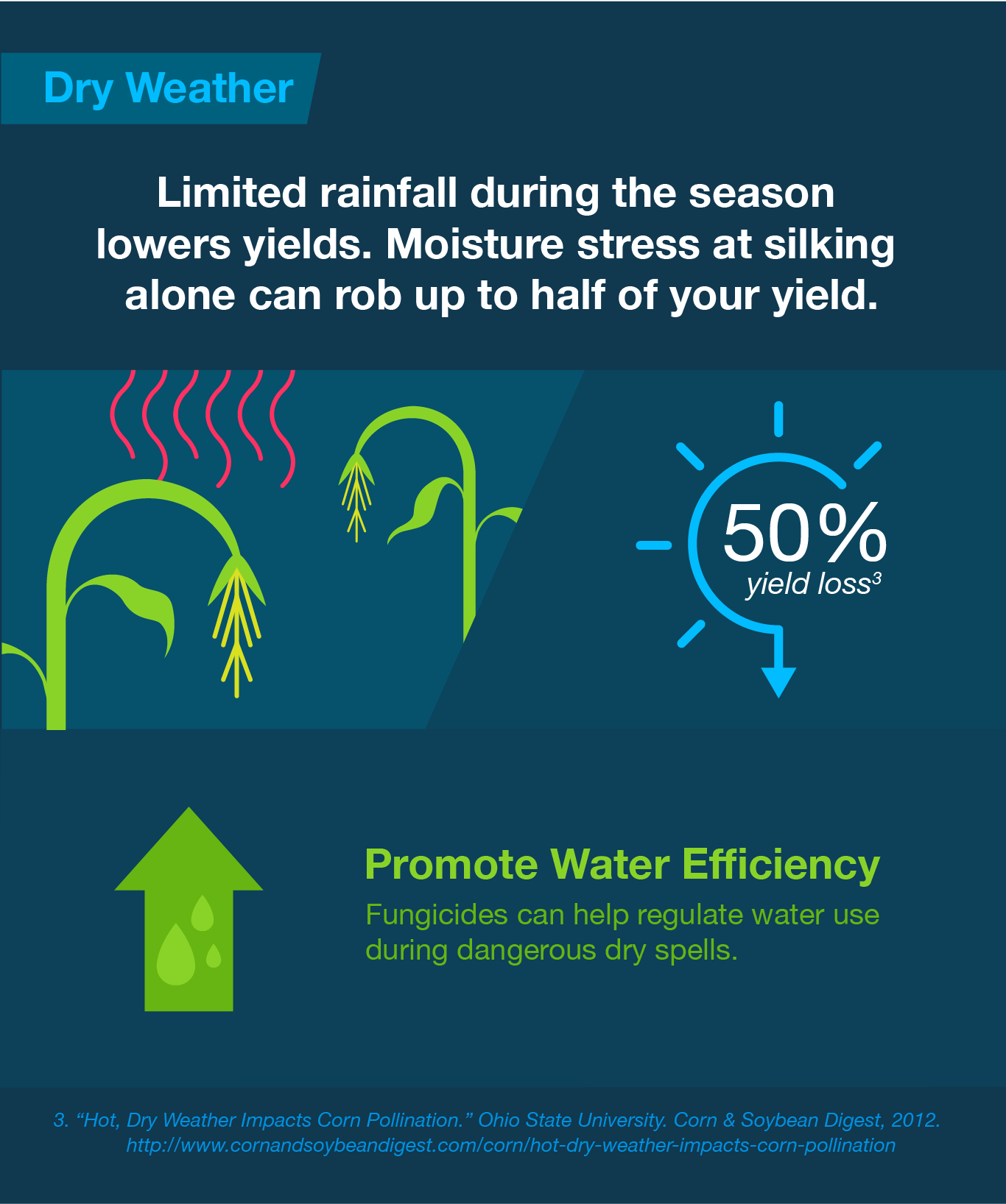 limited-rainfall-during-the-season-lowers-yields-moisture-stress-at-silking-can-rob-up-to-half-your-yield