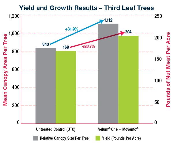 Chart showing yield and growth results for almond trees treated with Velum One and Movento compared to untreated