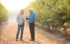 Two almond growers inspecting orchard
