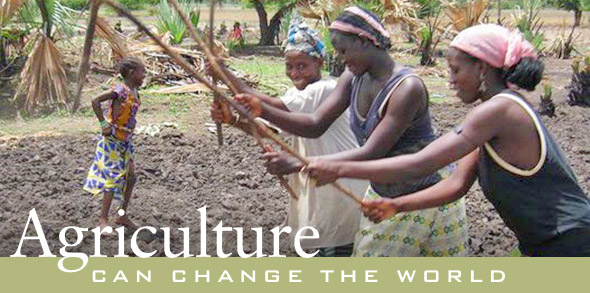 Agriculture can change the world