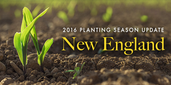 2016 Plating Season Update: New England