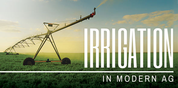 Irrigation in Modern Agriculture