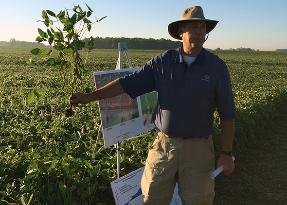 Dave Lamore explains early season disease control on soybeans