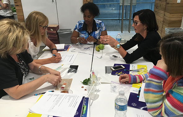 Teachers collaborate in Making Science Make Sense workshop