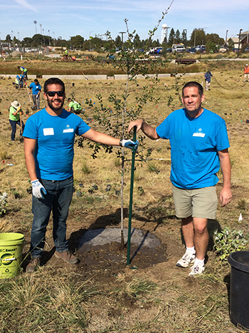 Bayer employees volunteer on the UC Davis campus on Community Service Day