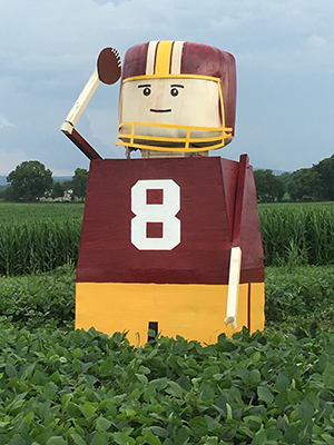 Kirk Cousins scare crow in strawberry field