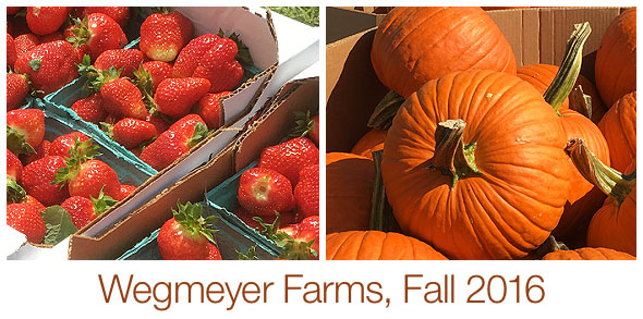 Wegmeyer Farms, Fall 2016