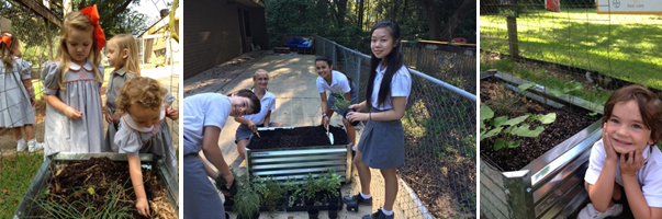Corpus Christi School in Alabama held their own Feed a Bee Garden Day.