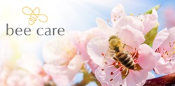 Facts about Honey Bees and Pesticides banner