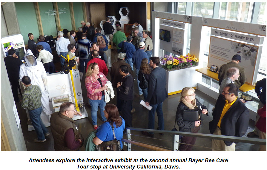 Attendees explore the interactive exhibit at the second annual Bayer Bee Care Tour stop at University California, Davis.