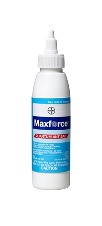 Maxforce Quantum Ant Bait offers economical ant control that lasts from one quarterly service visit to the next