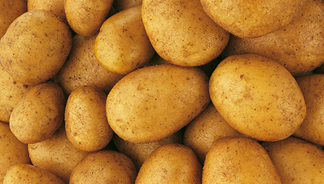 luna fungicide header potato