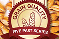 Grain Quality Series