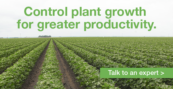 control plant growth for greater productivity