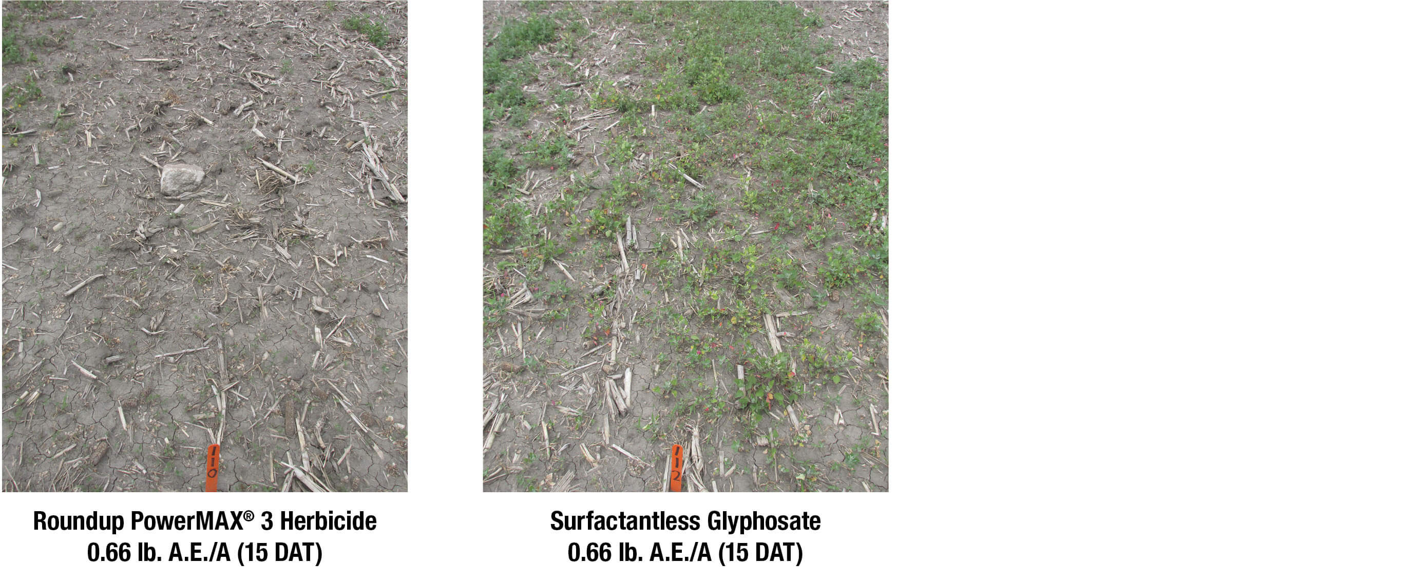Roundup PowerMAX 3 herbicide surfactants vs. surfactantless glyphosate weed control images
