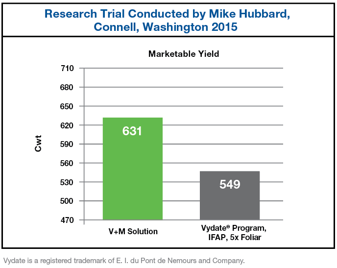 Chart showing the increased marketable yield when using V+M Solution as compared to Vydate Program