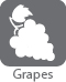 gray grapes icon