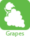 green grapes icon