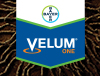 Velum One Logo