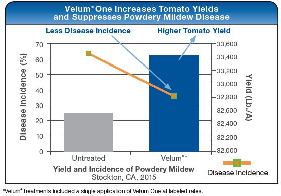 Velum One Reduces Nematode Damage and Increases Yield in Pepper