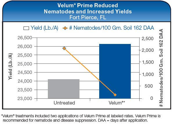 Velum Prime Reduced Nematodes and Increased Yields