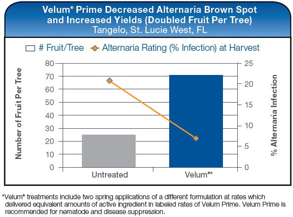 Velum Prime Decreased Alternaria Brown Spot and Increated Yields