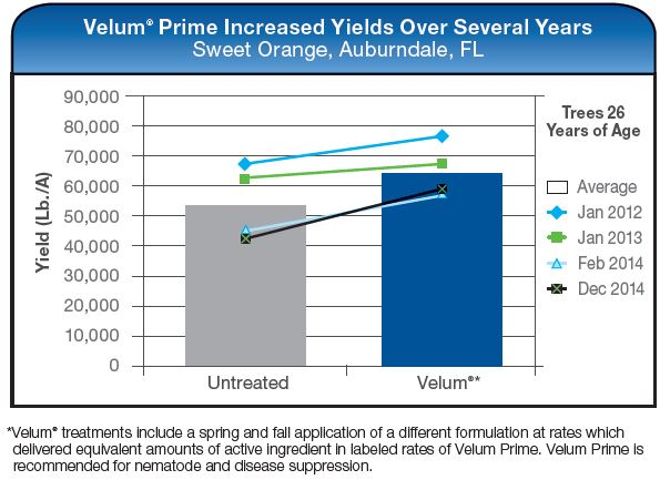 Velum Prime Increased Yields Over Several Years