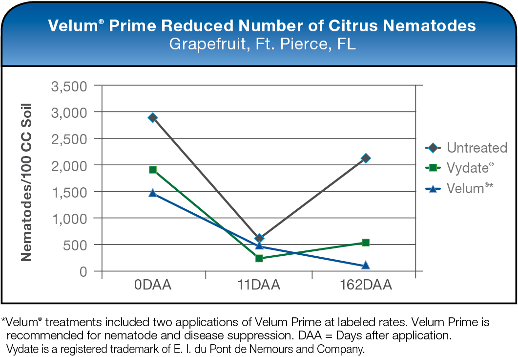 Velum Prime Reduced Number of Citrus Nematodes