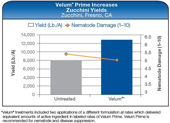 Velum Prime Increases Zucchini Yields