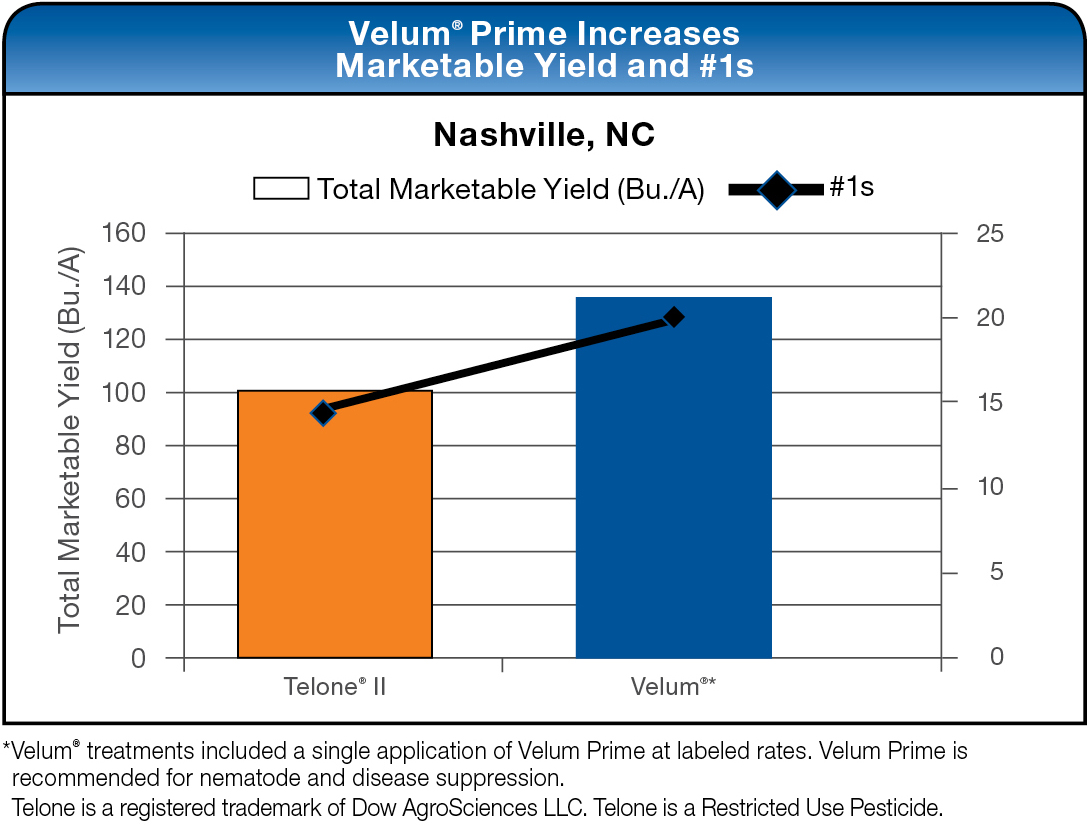 Velum Prime Increases Marketable Yield and #1s