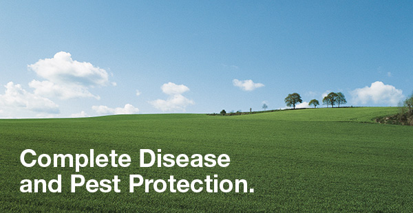 complete disease and pest protection for wheat fields with raxil pro shield