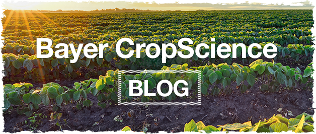 Bayer Crop Science Blog