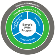 Bayer's IWM Program