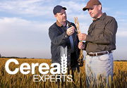Get relevant, wheat-specific content to help you grow a successful crop