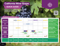 california grape recommended application timing