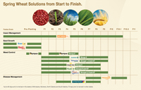 Spring Wheat Solutions from Start to Finish