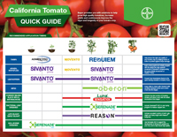 California Tomato recommended application timing