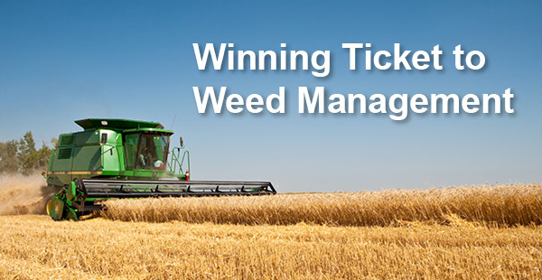 Winning ticket to weed management headline over an image of a crop being harvested.