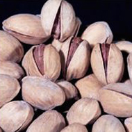Group of pistachios, Luna fungicide performance in controlling Alternaria
