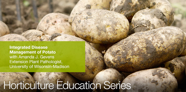 """Integrated Disease Management of Potatoes"" webinar led by Dr. Amanda Gevens cover slide with background of freshly harvested potatoes"