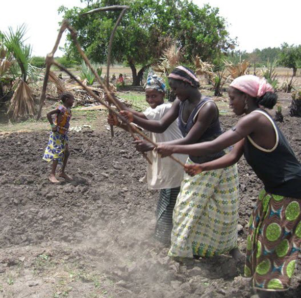 Women use farm tools to break the ground so they can plant